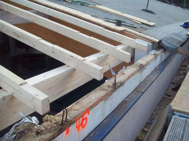 TRIXI-Allwetterbad - Grundinstandsetzung des Schwimmhallendaches
